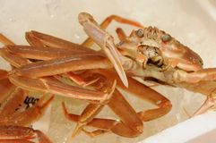 Japanese Crabs Royalty Free Stock Photos