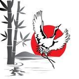 Japanese crane Royalty Free Stock Photography