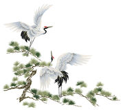 Japanese crane Royalty Free Stock Photo