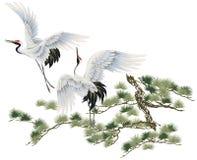 Japanese crane Stock Image