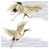 Japanese crane Royalty Free Stock Photography