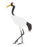 Japanese Crane Royalty Free Stock Image