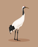 Japanese crane. Vector Illustration Stock Photos