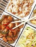 Japanese Cuisine Royalty Free Stock Photo