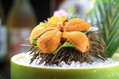 Japanese cuisine. Asian health food,sushi,The plate,sashimi,Rice balls,tuna,salmon,eat, shrimp,seafood,fresh,The Japanese wine,sake,The sea urchin Stock Photography