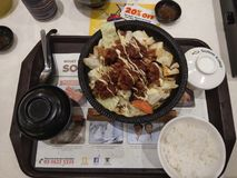 Japanese cuisine. Chicken Royalty Free Stock Images