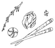 Japanese cuisine: chopsticks, pickled ginger, wasabi, pepper and rosemary vector illustration