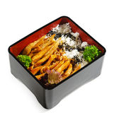 Japanese Cuisine - Fried Chicken Royalty Free Stock Image