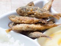 Japanese cuisine, fried fish marinade called Aji No Namban Stock Images