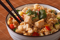 Japanese cuisine: fried rice with chicken - Tyahan. Horizontal Royalty Free Stock Images