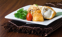 Japanese cuisine. fried tofu on the background Stock Image