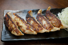 Japanese Cuisine Gyōza or Potstickers Royalty Free Stock Photo