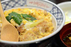 Japanese cuisine, Katsudon pork cutlet with fried egg on rice Stock Image