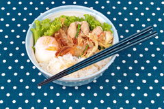 Japanese rice topped boil eggs and fried pork. Japanese cuisine , Rice with soft boil eggs and fried pork topped white sesame and slicrd dried mackarel in stock photography