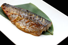 Japanese cuisine saba fish grilled with sauce Royalty Free Stock Photos