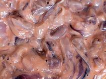 Japanese cuisine, salted squid guts called Ika No Shiokara in Ja Royalty Free Stock Photography