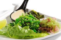 Japanese Cuisine - Seaweed Salad Stock Image
