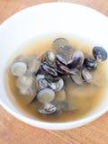 Japanese cuisine, shijimi clam miso soup Royalty Free Stock Photos