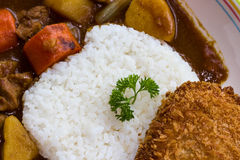 Japanese Curry with Fried Pork Stock Photos