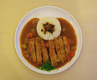 Japanese Curry Rice with Chicken Stock Photo