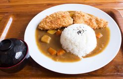 Japanese curry rice , fried fish curry. Royalty Free Stock Image