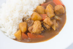 Japanese Curry with rice isolated close up Royalty Free Stock Photography