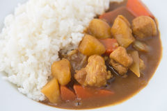 Japanese Curry with rice isolated close up Royalty Free Stock Photos