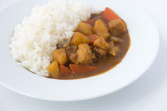 Japanese Curry with rice isolated close up Stock Image