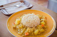 Japanese curry rice Royalty Free Stock Images