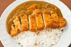 Japanese curry ricepork. Pic of japanese curry ricepork Royalty Free Stock Photos