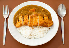 Japanese curry ricepork. Pic of japanese curry ricepork Stock Photo