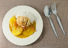 Japanese Curry and Tonkatsu with Boiled  Rice Royalty Free Stock Photo