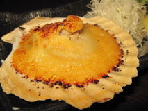 Japanese cusine - scallop. Scallop with cream cheese on top royalty free stock photography