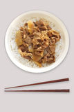 Japanese dish beef bowl , rice topped with beef and onion Royalty Free Stock Image