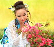 The Japanese dreams Stock Photography