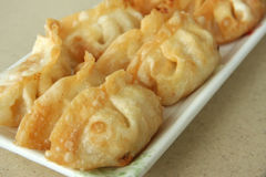 Japanese dumplings Royalty Free Stock Photography