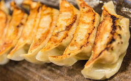 Japanese dumplings Royalty Free Stock Photo