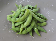 Japanese Edamame. Photographs of Japanese edamame on a gray background royalty free stock photography