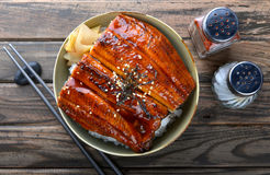 Japanese eel grilled with rice or Unagi don. Japanese eel grilled with rice or Unagi don set on plate in Japanese style with studio lighting royalty free stock image