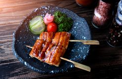 Japanese eel grilled in skewer. Japanese eel grilled in skewer or Unagi ibaraki set on plate in Japanese style with studio lighting stock photos