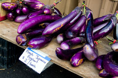 Japanese Eggplant Royalty Free Stock Photography