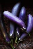 Japanese Eggplant Royalty Free Stock Images