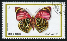 Japanese emperor butterfly. UMM AL-QUWAIN - CIRCA 1972: stamp printed by Umm al-Quwain, shows Japanese emperor butterfly, circa 1972 royalty free stock photo