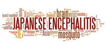 Japanese encephalitis. Mosquito borne virus disease. Word cloud illustration Stock Image