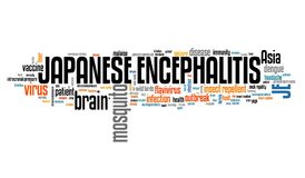 Japanese encephalitis. Mosquito borne virus disease. Word cloud illustration Royalty Free Stock Photo