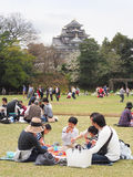 Japanese enjoying Cherry blossoms festival in park Stock Photography