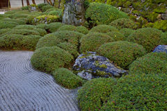 Japanese Evergreen Garden Royalty Free Stock Photos