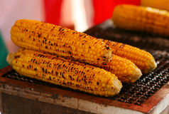 Japanese festival food corn Stock Images
