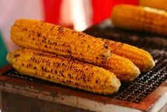 Japanese festival food corn. Traditional Japanese festival food roasted corn cobs Stock Images