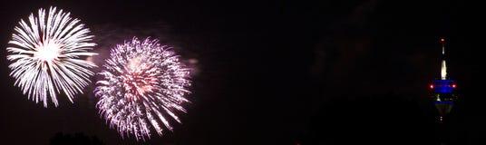 Japanese Firework Royalty Free Stock Image